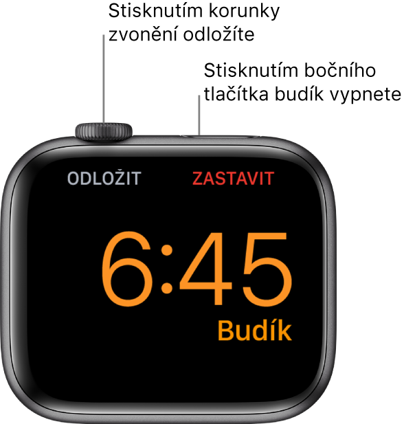 """Apple Watch položené na boku. Na obrazovce svítí zvonící budík. Pod korunkou Digital Crown je zobrazené slovo """"Odložit"""", Slovo """"Zastavit""""pod postranním tlačítkem."""