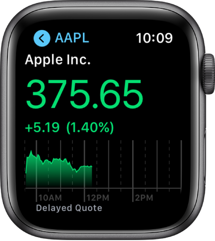 Information about a stock in the Stocks app.