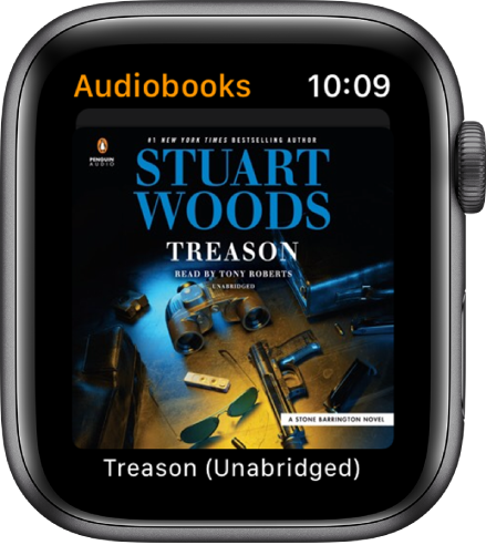 The cover art for an audiobook.
