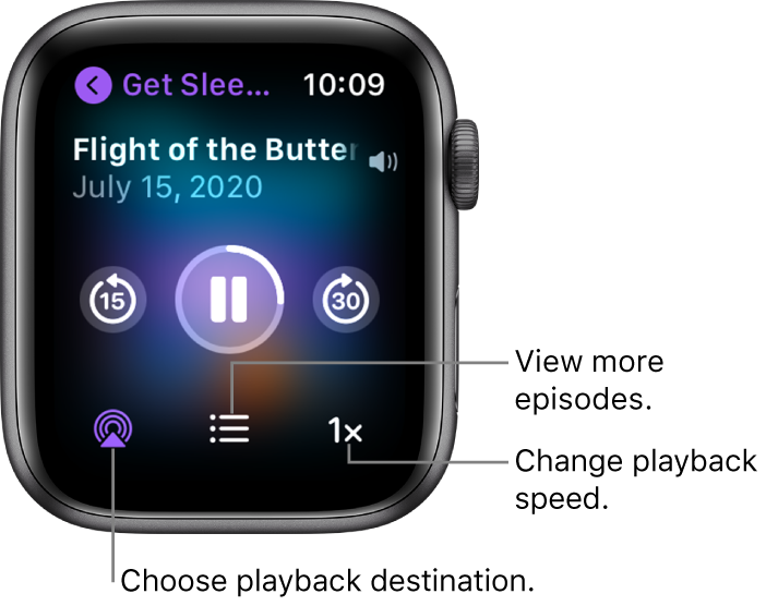 A Podcasts Now Playing screen showing the show title, episode title, date, skip-back-15-seconds button, pause button, skip-ahead-30-seconds button, AirPlay button, episodes button, and playback speed button.