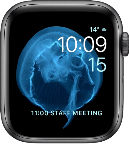 La carátula Movimiento mostrando una medusa. Puedes escoger qué objeto se muestra en movimiento y agregar varias complicaciones.