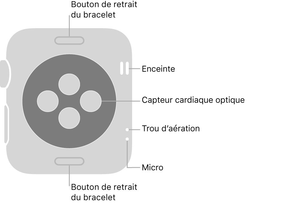 L'arrière de l'AppleWatch Series3, avec les boutons de retrait du bracelet en haut et en bas, les capteurs optiques de fréquence cardiaque au milieu ainsi que, de haut en bas près du côté de la montre, le haut-parleur, l'aération et le micro.