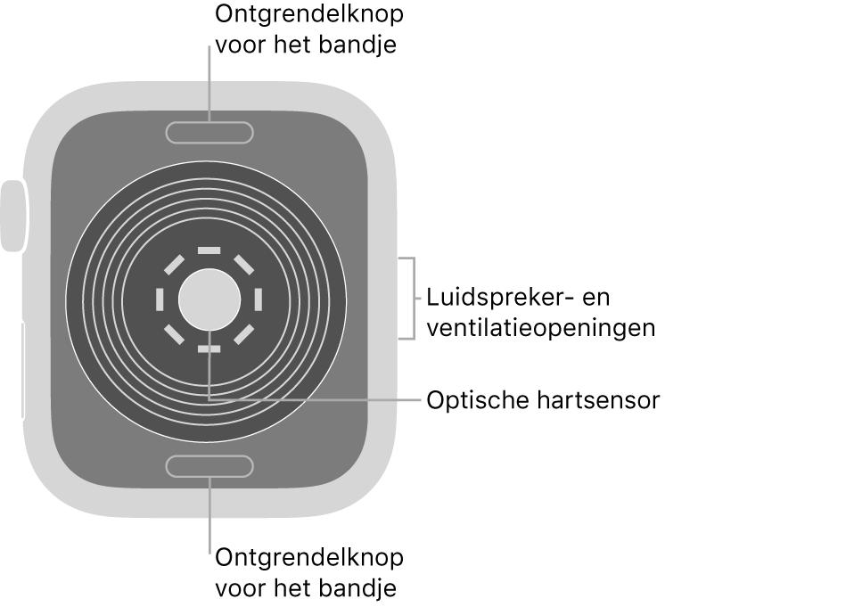 De achterkant van de AppleWatchSE, met aan de boven- en onderkant de ontgrendelknoppen van het bandje, in het midden de optische hartsensor en aan de zijkant de luidspreker- en ventilatieopeningen.