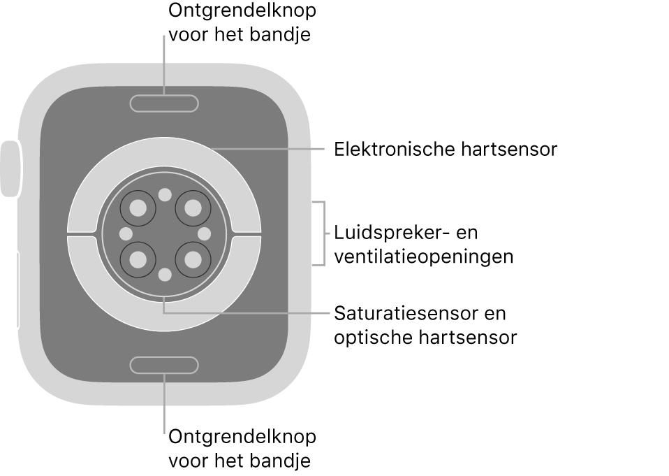 De achterkant van de AppleWatch Series6, met aan de boven- en onderkant de ontgrendelknoppen van het bandje, in het midden de elektrische hartsensoren, de optische hartsensoren en de saturatiesensoren, en aan de zijkant de luidspreker- en ventilatieopeningen.