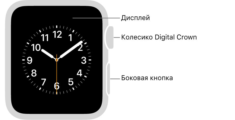 Лицевая сторона AppleWatch Series3. Надисплее показан циферблат. Сбоку часов показаны колесико DigitalCrown ибоковая кнопка.
