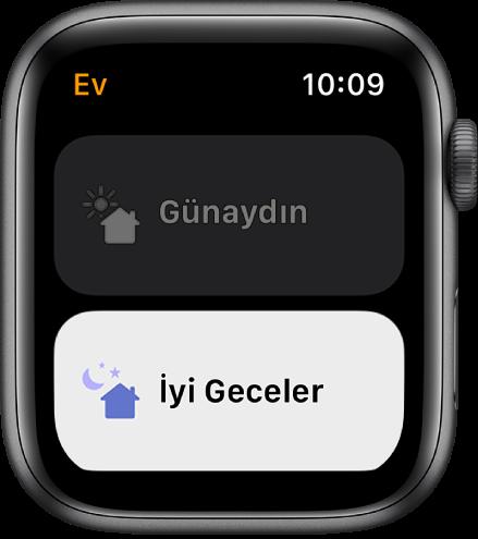 Apple Watch'taki Ev uygulaması iki ortam gösteriyor: Günaydın ve İyi Geceler. İyi Geceler vurgulanıyor.