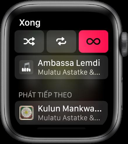 Cửa sổ danh sách bài đang hiển thị các nút Xáo trộn, Lặp lại và Tự động phát ở trên cùng và một bài hát ở ngay bên dưới. Ở gần dưới cùng, một bài hát khác xuất hiện bên dưới Sẽ phát tiếp theo.