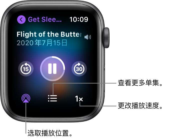 """""""播客""""的""""播放中""""屏幕,显示节目标题、单集标题、日期、向后跳 15 秒按钮、暂停按钮、向前跳 30 秒按钮、隔空播放按钮、单集按钮以及播放速度按钮。"""