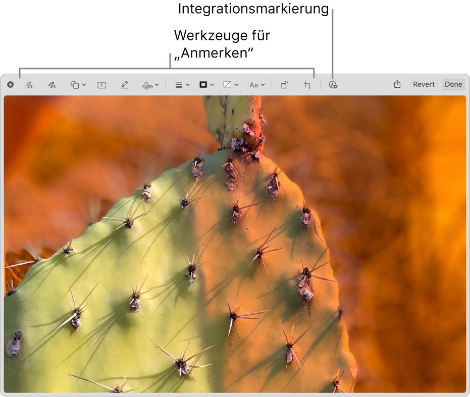 """Ein Bild im Fenster """"Markierung"""" zeigt die Symbolleiste mit den Markierungswerkzeugen sowie das Werkzeug, auf das geklickt werden muss, um die Integrationsoption """"Markierung"""" auf einem in der Nähe befindlichen iPhone oder iPad zu verwenden."""