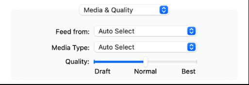 """Die Optionen """"Medien & Qualität"""" mit den Einblendmenüs für die Papierfachauswahl und die Medienauswahl sowie ein Schieberegler für die Qualität."""