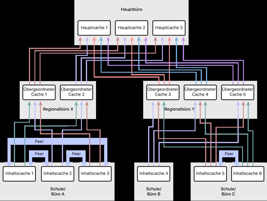 Ein Netzwerk mit mehreren Inhaltscaches in einer dreistufigen Hierarchie bestehend aus übergeordneten Inhaltscaches und Hauptcaches. Nur für die Inhaltscaches auf der untersten Stufe der Hierarchie sind Peers definiert.