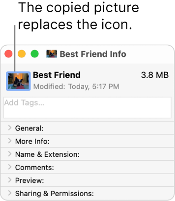 The Info window for a folder, showing the generic icon replaced by a picture.