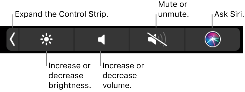 The collapsed Control Strip includes buttons — from left to right — to expand the Control Strip, increase or decrease display brightness and volume, mute or unmute, and ask Siri.