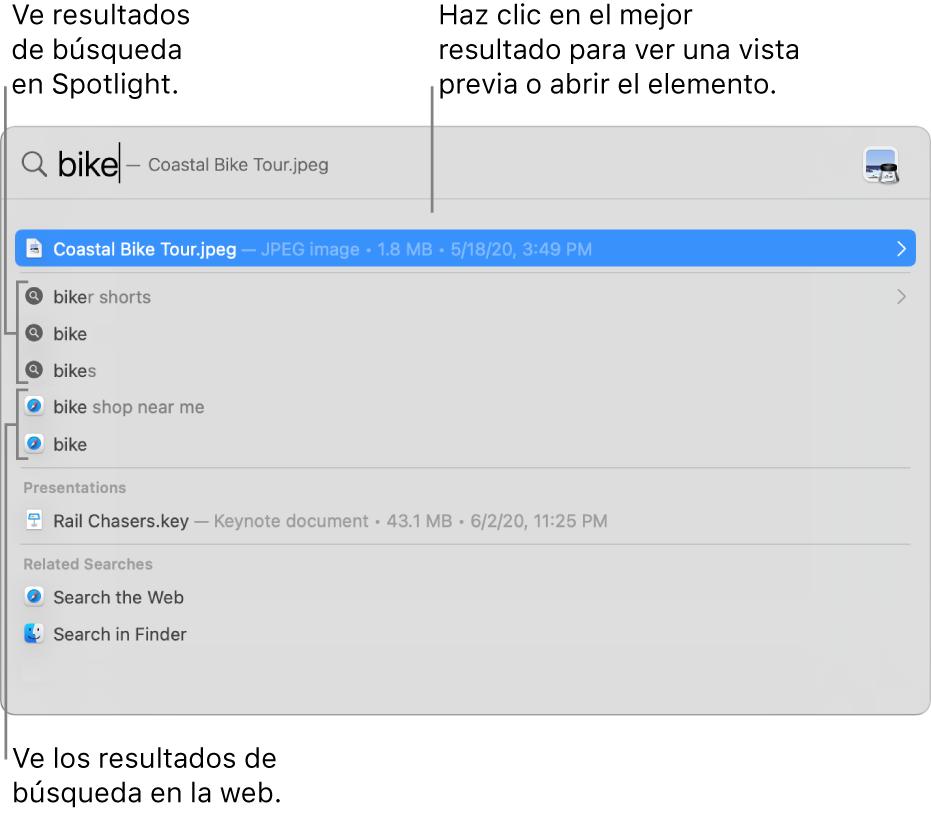 La ventana de Spotlight mostrando texto de búsqueda en el campo de búsqueda en la parte superior de la ventana, los resultados y sugerencias de búsqueda debajo.
