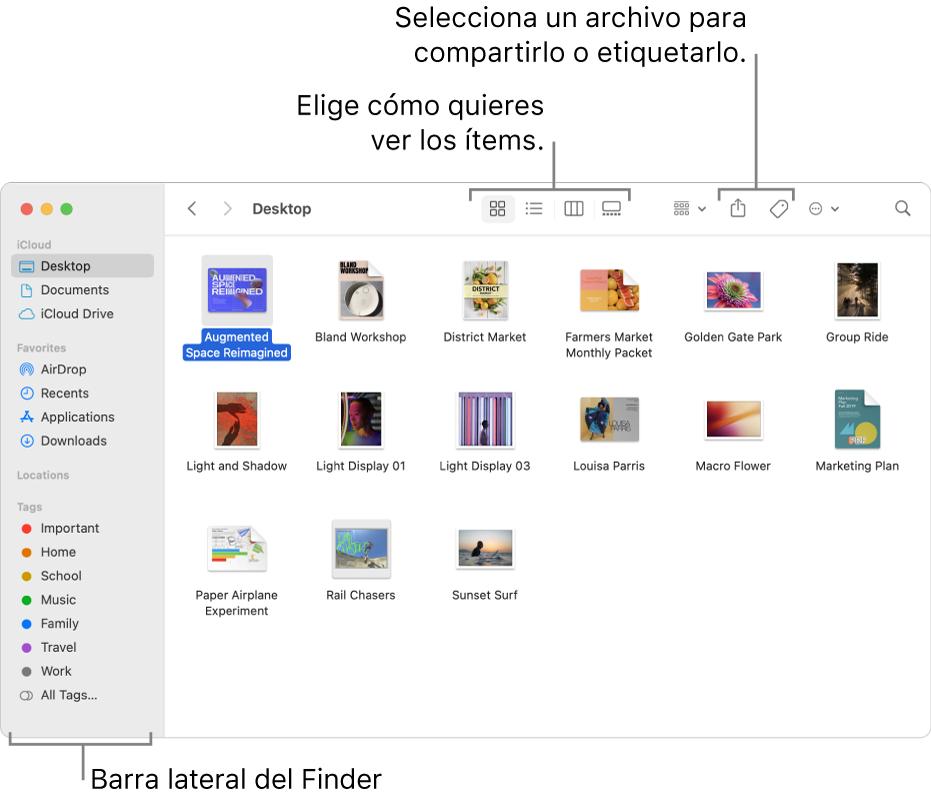 Una ventana del Finder con la barra lateral del Finder a la izquierda. Al principio de la ventana hay cuatro botones que cambian el modo en que se muestran los ítems en la ventana y botones adicionales para organizar y compartir ítems.