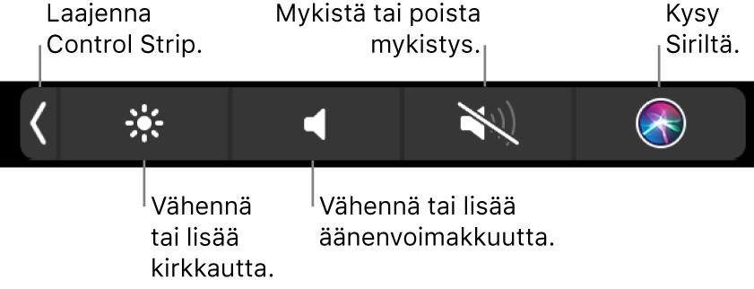 Pienennetyssä ControlStripissä on painikkeet, joilla voidaan (vasemmalta oikealle) laajentaa ControlStrip, lisätä tai vähentää näytön kirkkautta ja äänenvoimakkuutta, mykistää tai poistaa mykistys sekä kysyä Siriltä.