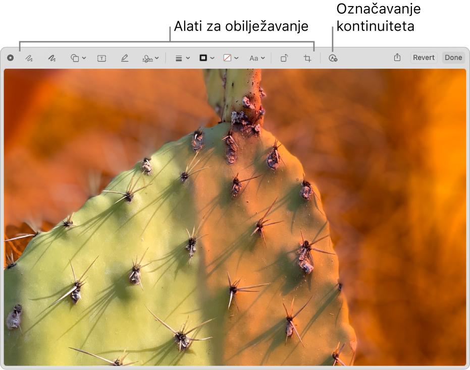 Slika u prozoru Obilježavanje s prikazom alatne trake s alatima obilježavanja i alatom za korištenje Obilježavanja kontinuiteta na iPhoneu ili iPadu u blizini.