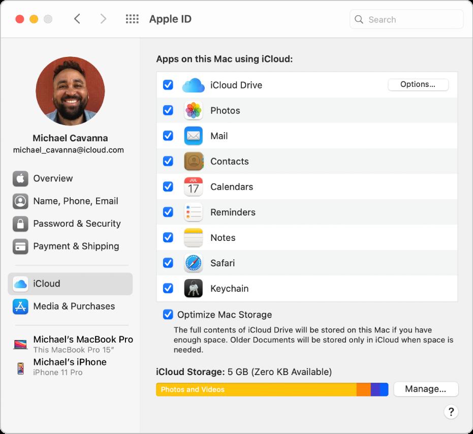 Het paneel 'AppleID' in Systeemvoorkeuren, met een navigatiekolom met daarin verschillende typen accountopties die je kunt gebruiken, en het voorkeurenpaneel 'iCloud' voor een bestaande account.