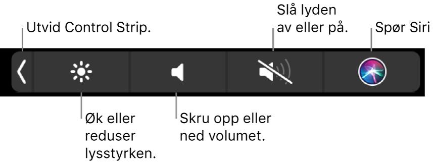 Når Control Strip er minimert, inneholder den knapper, fra venstre mot høyre, for å utvide Control Strip, øke eller redusere lysstyrke og volum, slå lyden av eller på og spørre Siri.