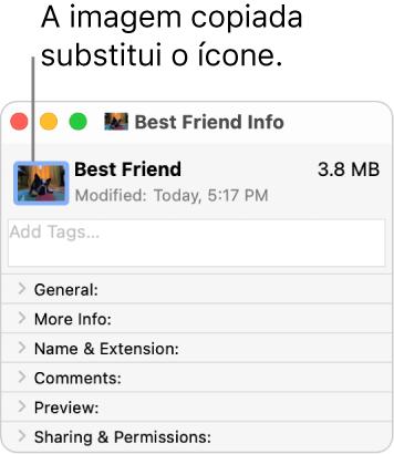 Janela de Informações de uma pasta, mostrando o ícone genérico substituído por uma imagem.