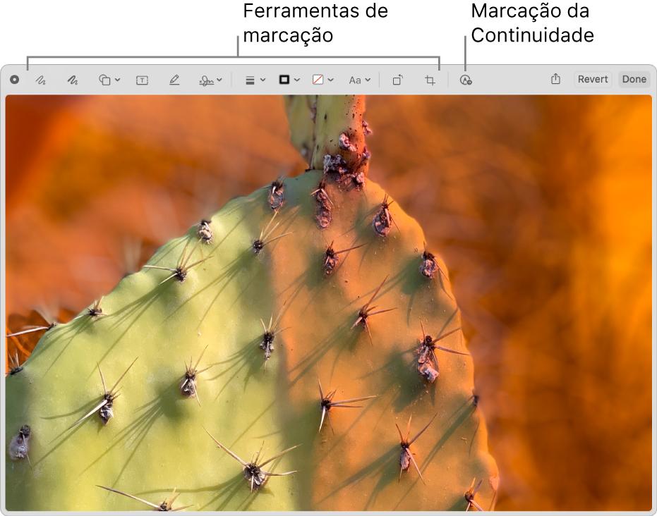 Uma imagem na janela de Marcação exibindo a barra de ferramentas das ferramentas de Marcação e a ferramenta a se clicar para usar a Continuidade de marcação em um iPhone ou iPad próximos.