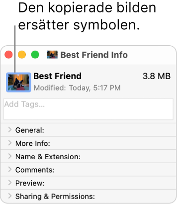 Infofönstret med en mapp som visar den generiska symbolen som ersatts med en bild.