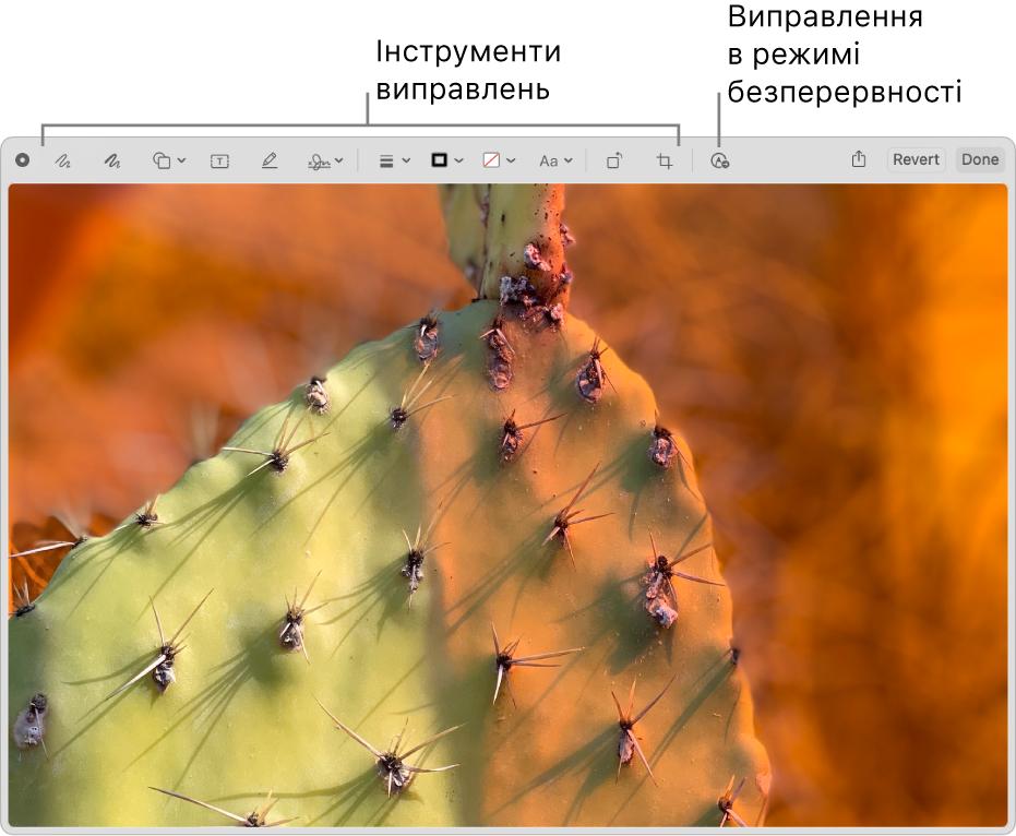 Зображення у вікні «Виправлення» з панеллю інструментів для виправлення й інструментом для використання неперервного виправлення на iPhone або iPad поруч.
