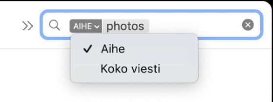 Hakusuodatin, jonka alas osoittavaa nuolta klikkaamalla on tuotu esiin kaksi vaihtoehtoa: Aihe ja Koko viesti. Aihe on valittu.