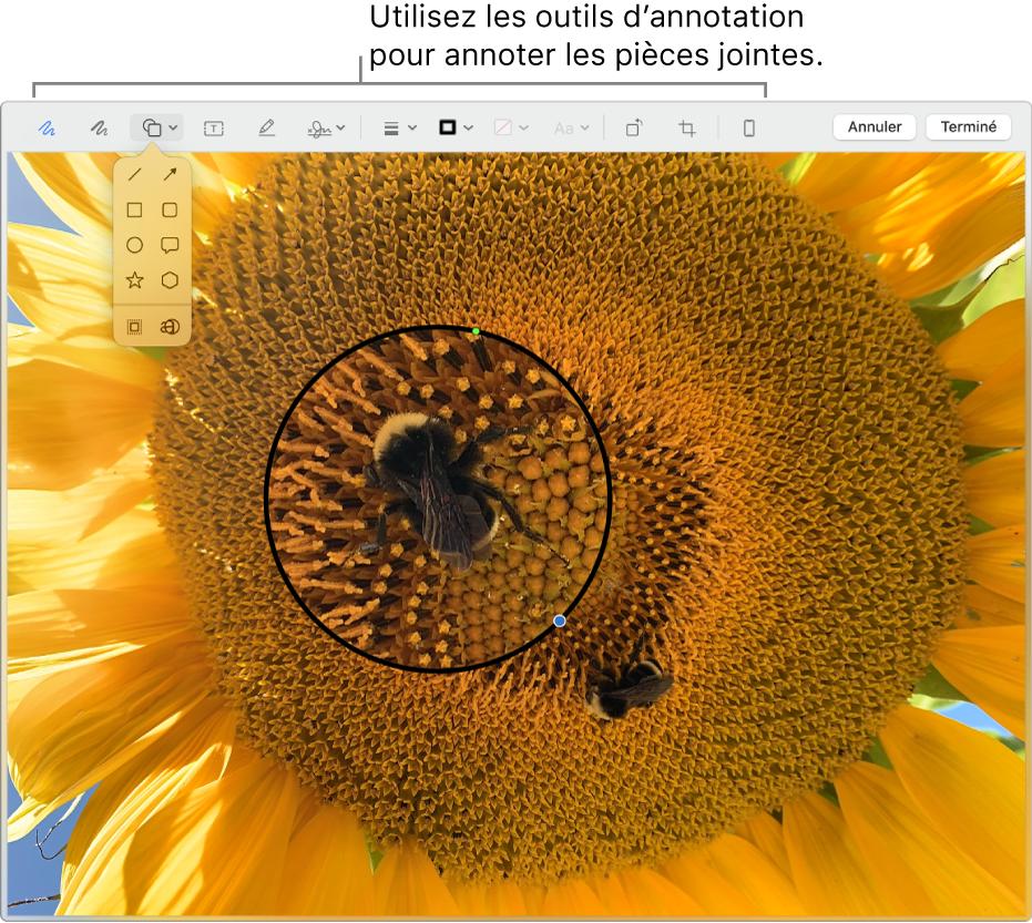 Une pièce jointe avec la barre d'outils Annoter en haut.