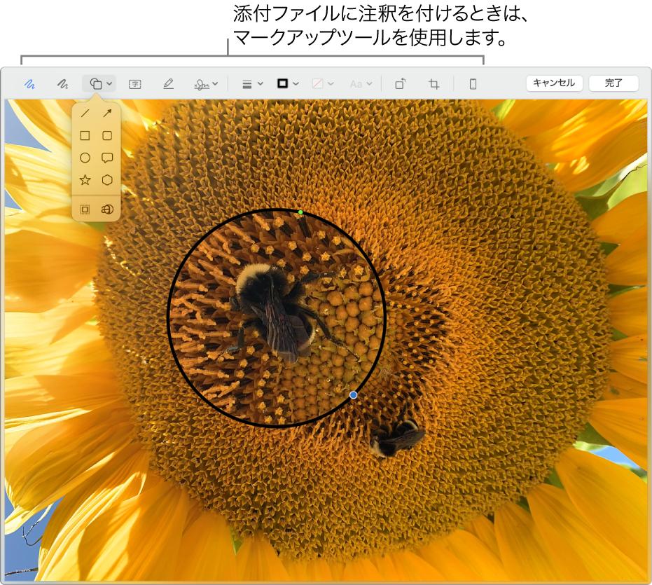添付ファイル。上部に「マークアップ」ツールバーがあります。