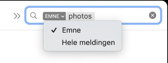 Et søkefilter der nedoverpilen ble klikket på for å vise to valg: Emne og Hele meldingen. Emne er markert.