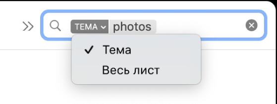 Пошуковий фільтр з натиснутою стрілкою вниз і двома опціями: «Тема» і «Весь лист». Вибрано «Тема».
