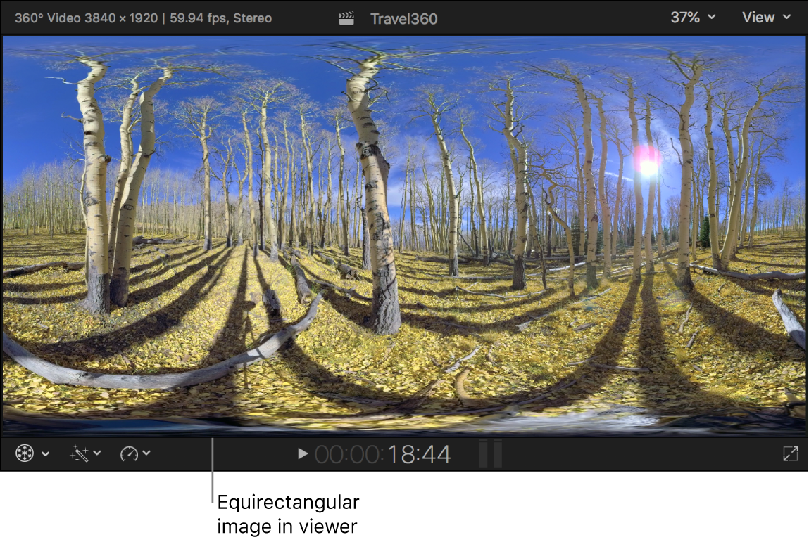 An equirectangular 360° image in the viewer