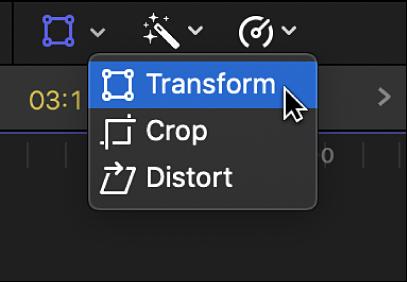 The Transform menu item for accessing Transform controls