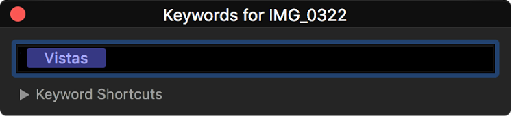 The keyword editor displaying keywords applied to the selected clip