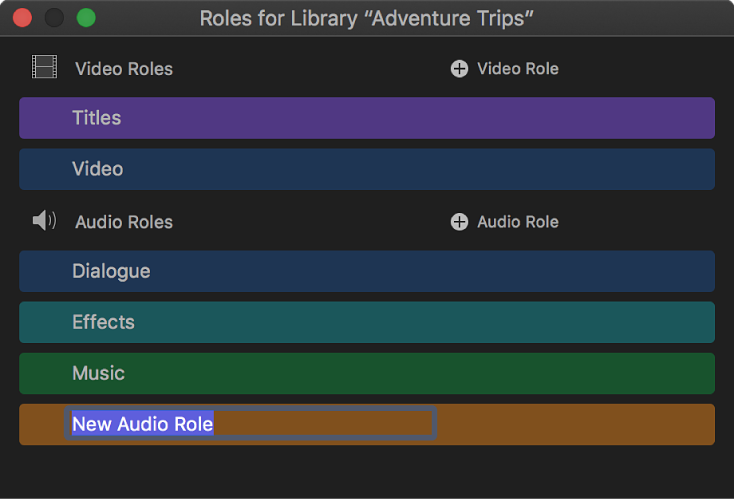 A newly created audio role shown in the role editor