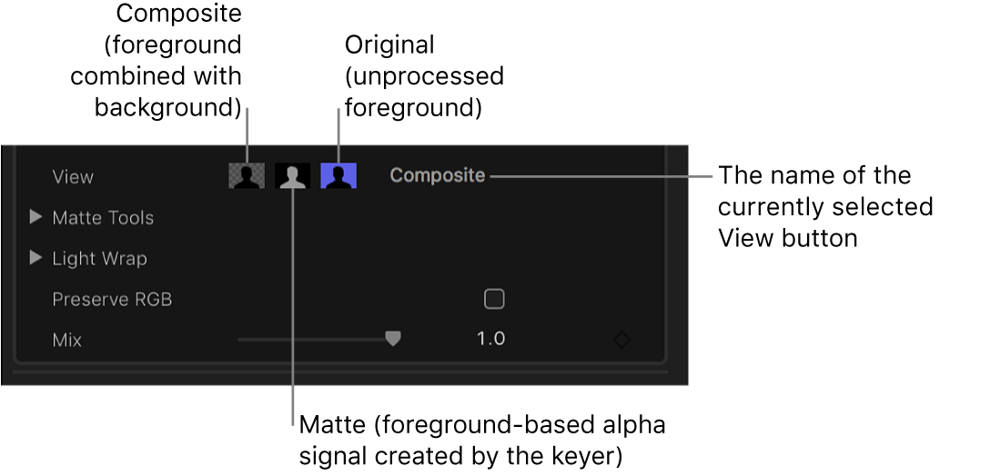 The View controls in the Video inspector