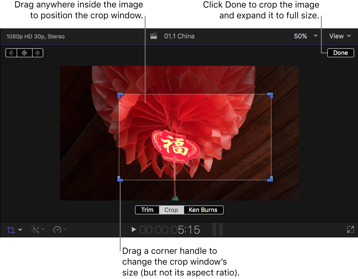 The viewer showing the Crop onscreen controls