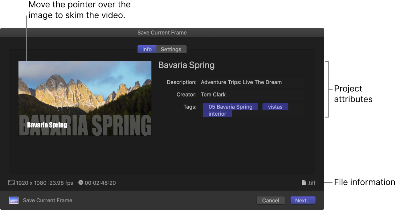 The Info pane of the Share window for the Save Current Frame destination