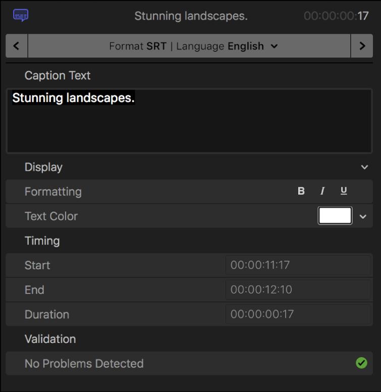 El inspector de subtítulos con controles de formato de texto de subtítulos para el formato SRT