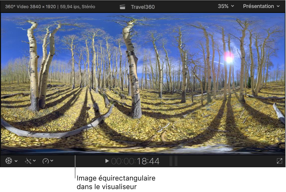 Image 360° équirectangulaire dans le visualiseur