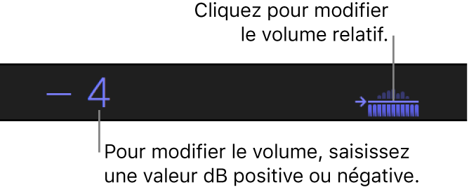 Zone sous le visualiseur affichant des valeurs dB absolues