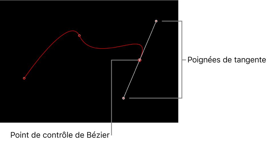 Visualiseur avec point de contrôle de Bézier accompagné de ses poignées de tangente