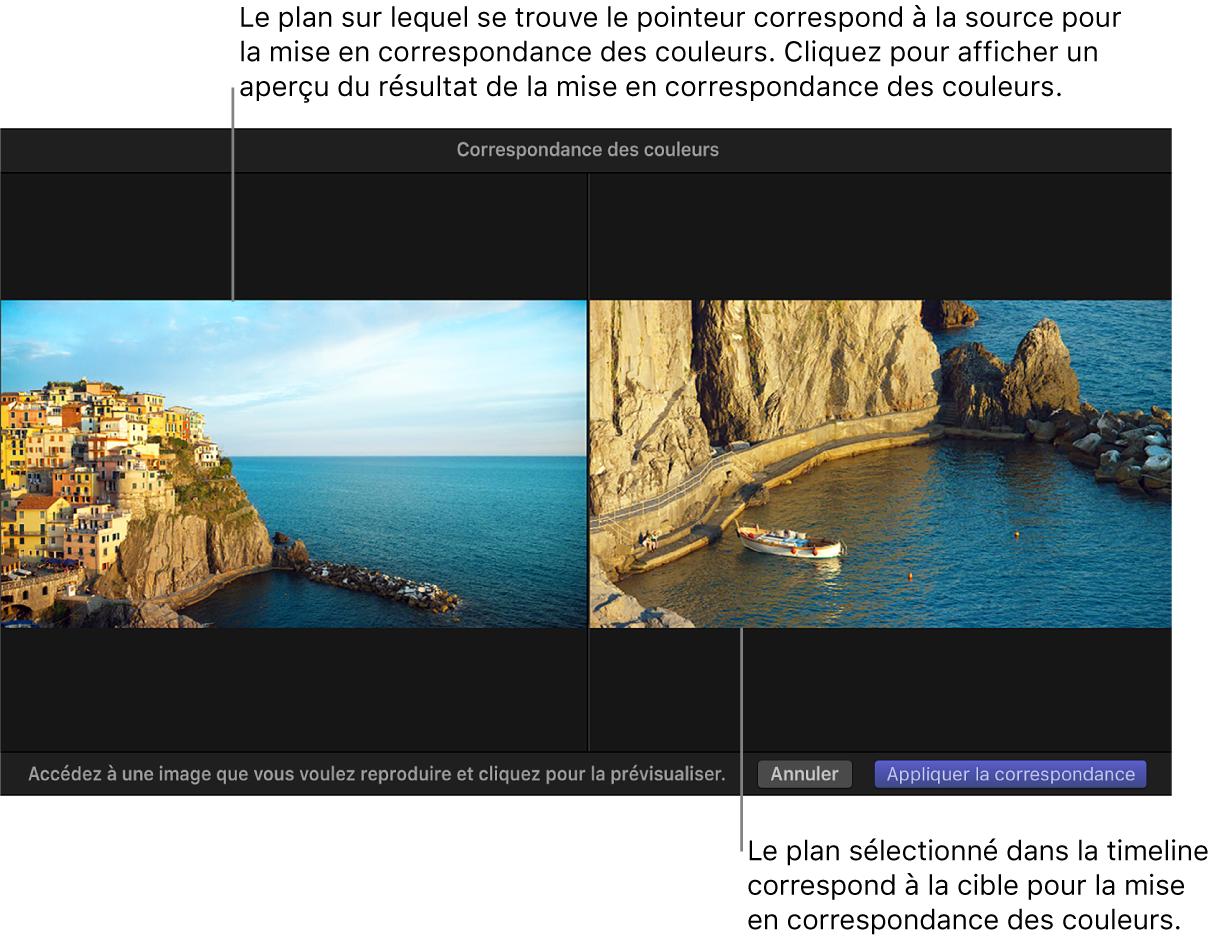 Visualiseur affichant le plan source et le plan cible de la fonction Correspondance des couleurs