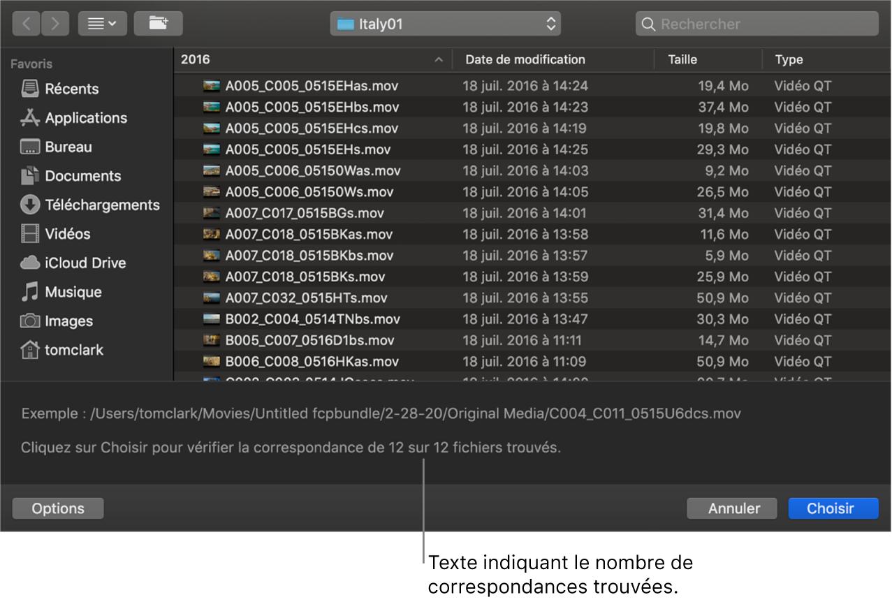 Fenêtre répertoriant les fichiers de données correspondant aux plans sélectionnés