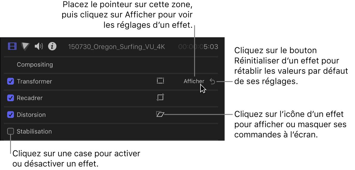 Inspecteur vidéo avec les commandes de l'effet