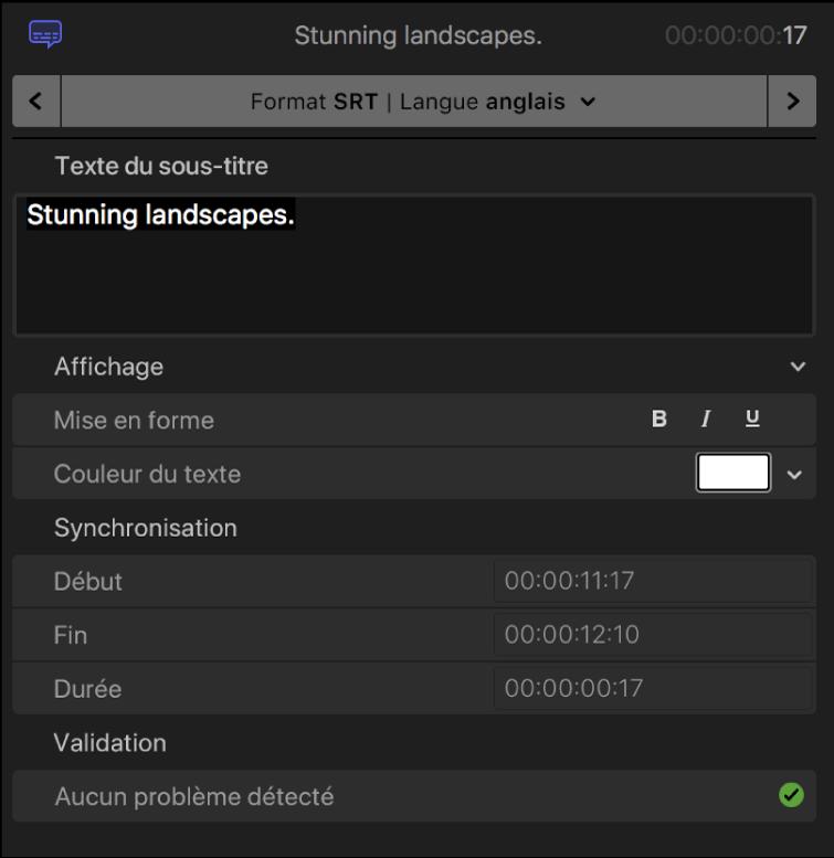 Inspecteur de sous-titre affichant les commandes de mise en forme de texte de sous-titre pour le format SRT