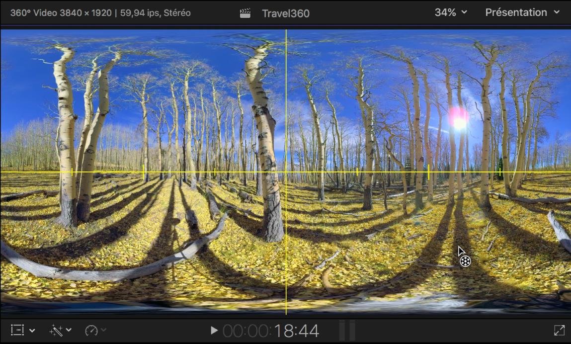 Visualiseur montrant les guides Horizon jaunes sur un plan vidéo 360°