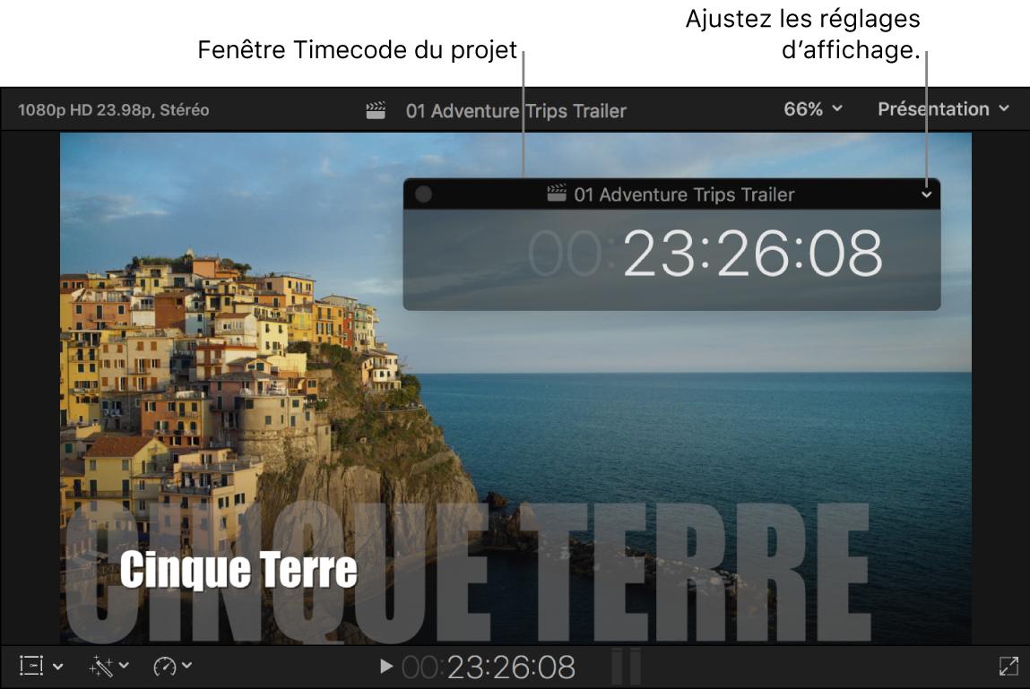 Fenêtre du timecode du projet placée sur le visualiseur, avec le timecode du projet au niveau de la tête de lecture