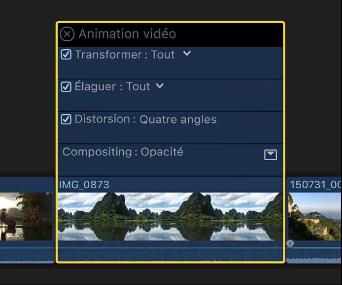 Éditeur d'animation vidéo au-dessus d'un plan vidéo dans la timeline